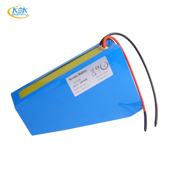 Buy Factory Price 48V 1000W Electric Bike 20Ah li ion battery 48 Volt 18650 Batteries with BMS